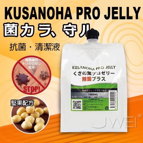 日本原裝進口NPG.抗菌潤滑液大容量-1000ml